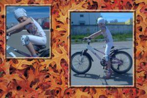 велосипедная защита
